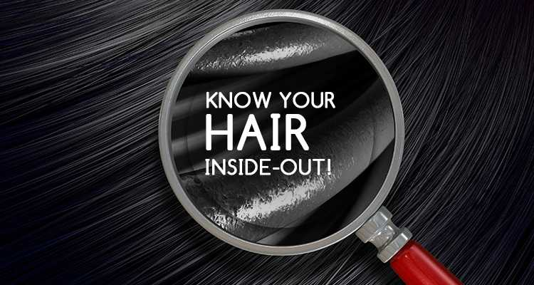 Know Your Hair Inside & Out